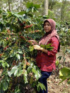 Ibu Rahmah, présidente de la coopérative Ketiera, la seule coopérative dirigée par des femmes en Indonésie.