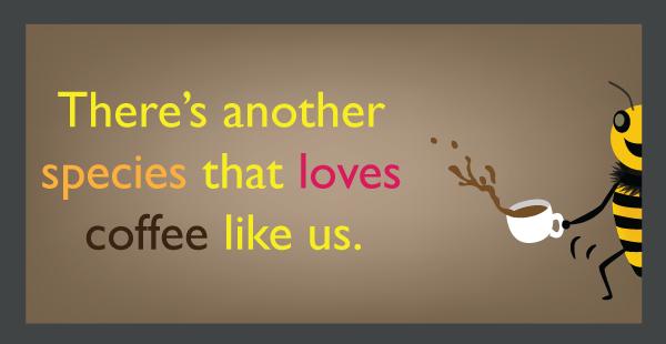 <pre>Les abeilles sont des accros du café de la nature