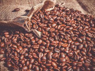 Arabica ou Robusta, quelles sont les différences entre les deux mélanges de café - Campioni.cn