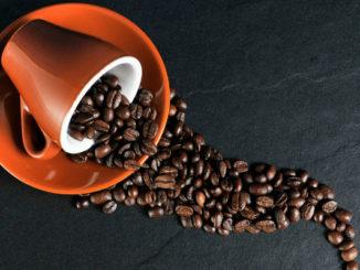 Le café te fait aller aux toilettes, pourquoi? La réponse dans le microbiome