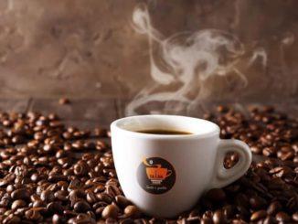 SA.I.DA Espresso Cialde: né pour être au service de votre café - InfoOggi.it