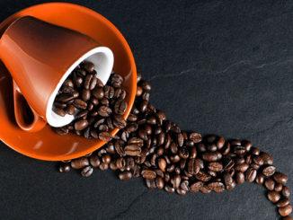 Sommelier du café: le nouvel emploi de la restauration de luxe