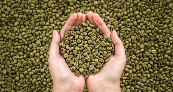 """café vert """"width ="""" 680 """"height ="""" 360 """"srcset ="""" https://www.shop-ici-ailleurs.com/wp-content/uploads/2019/06/comment-reconnaitre-le-cafe-rance.png 680w, https: //www.horecanews .it / wp-content / uploads / 2019/02 / coffee-green-300x160.png 300w """"tailles ="""" (largeur maximale: 680px) 100vw, 680px"""