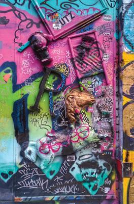 Graffiti spécial dans le district de Mission (ph. Federica Maule)