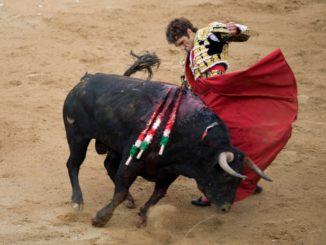José Tomás, le philosophe torero devenu légende