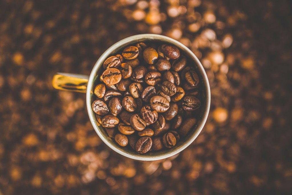 café contre les moustiques