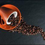 Comment profiter d'un bon café sans aller au bar - AscoliNews.it