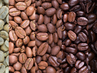 Découvrez le café: les types de torréfaction