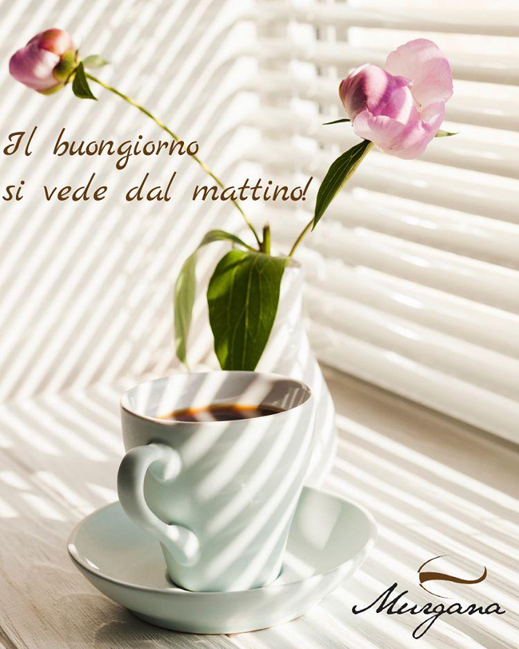 Les médias de murganacaffe: ☕ Caffè Murgana depuis 1998 𝙄𝙡 𝙗𝙪𝙤𝙣𝙜𝙞𝙤𝙧𝙣𝙤 𝙫𝙚𝙙𝙚 𝙙𝙖𝙡 𝙙𝙖𝙡! ☕😃 ☎ T