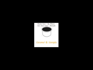 10 capsules AROMA TRUE - ILLY MITACA - FIOR FIORE COOP