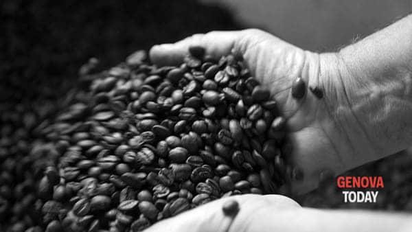 dégustation entre café et goût-2