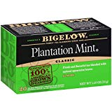 Bigelow Plantation Mint Black Tea Bags 20-Count Boxes (Pack of 6), 120 Tea Bags Total.  Caffeinated Individual Black Tea Bags, for Hot Tea or Iced Tea, Drink Plain or Sweetened with Honey or Sugar