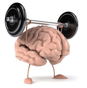 "https://indepthguide.com/"" width=""185"" height=""187"" srcset=""https://www.shop-ici-ailleurs.com/wp-content/uploads/2019/12/1576083463_666_Meilleur-the-vert-2018-Meilleures-marques-et-avis.jpg 297w, https://indepthguide.com/wp-content/uploads/2017/10/brain-power-768x775.jpg 768w, https://indepthguide.com/wp-content/uploads/2017/10/brain-power-1015x1024.jpg 1015w"" sizes=""(max-width: 185px) 100vw, 185px"
