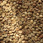 Les meilleurs grains de café Starbucks pour expresso