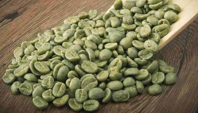 Café vert pour perdre du poids, les bienfaits de l'acide chlorogénique