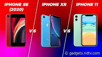 iPhone 11 vs iPhone SE (2020) vs iPhone XR: quel est le meilleur iPhone «abordable» en Inde?