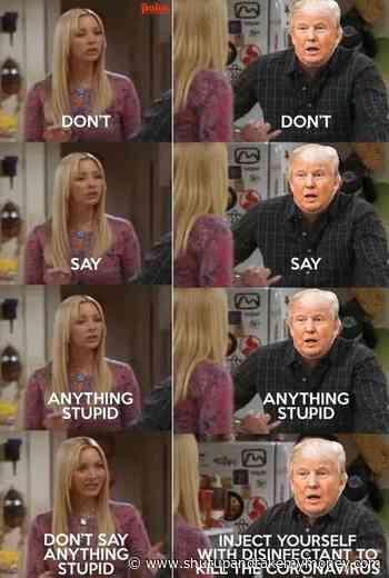 Ne dis rien de stupide Meme Clorox Donald Trump Lysol