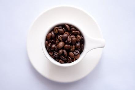Coffee, espresso, and cold brew: What's the difference?