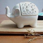 Fournisseurs en gros de poussière de thé en Inde