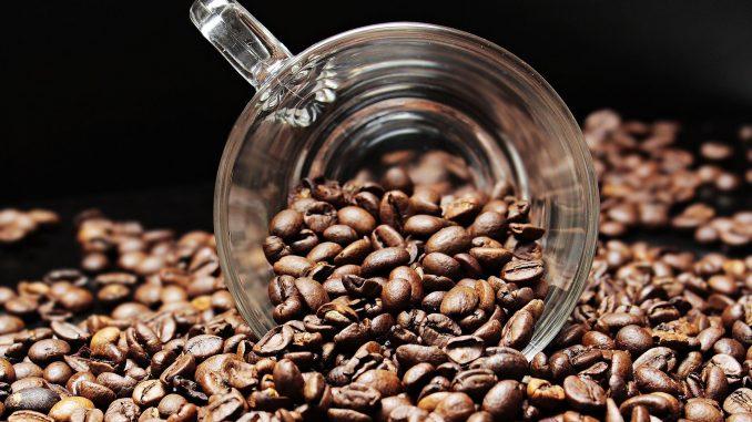 Qui n'a pas besoin de boire du café tous les jours? Voici la réponse incroyable