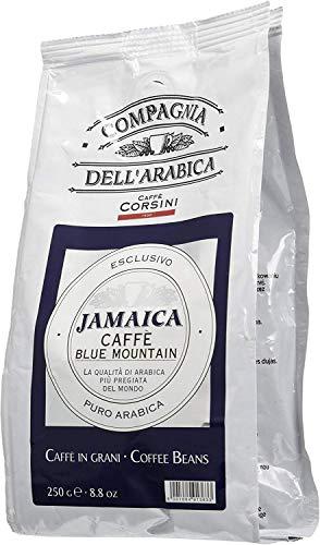 Caffè Corsini Compagnia dell Arabica Jamaica Blue Mountain Caffè Monorigine in Grani, lo Specialty Coffee dalle Alture della Giamaica, Intenso e Fruttato, Confezione da 250 g in Grani