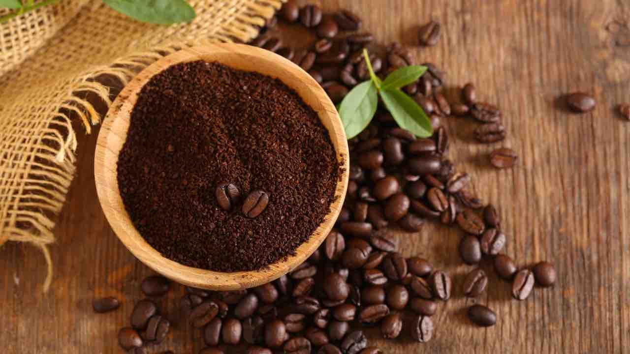 """recette de marc de café """"width ="""" 1280 """"height ="""" 720 """"srcset ="""" https://www.shop-ici-ailleurs.com/wp-content/uploads/2021/06/1623775344_793_Ne-jetez-pas-le-marc-de-cafe-utilisez-le-comme.jpg 1280w, https : //www.mezzokilo.it/wp-content/uploads/2021/06/fondi-di-caffe-3-300x169.jpg 300w, https://www.mezzokilo.it/wp-content/uploads/2021/ 06 / coffee-funds-3-1024x576.jpg 1024w, https://www.mezzokilo.it/wp-content/uploads/2021/06/fondi-di-caffe-3-768x432.jpg 768w, https: //www .mezzokilo.it/wp-content/uploads/2021/06/fondi-di-caffe-3-696x392.jpg 696w, https://www.mezzokilo.it/wp-content/uploads/2021/06 /fondi- di-caffe-3-1068x601.jpg 1068w, https://www.mezzokilo.it/wp-content/uploads/2021/06/fondi-di-caffe-3-747x420.jpg 747w """"tailles ="""" (max- largeur : 1280px) 100vw, 1280px"""